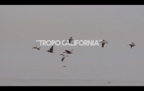 Tropo California